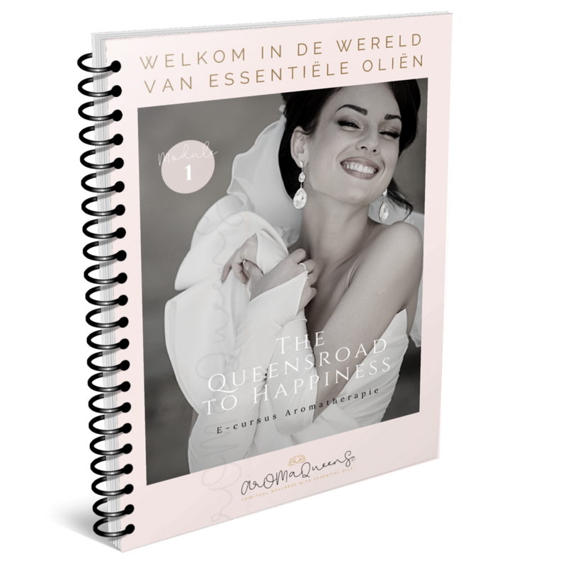 Introductie ebook module 1 The Queensroad to Happiness